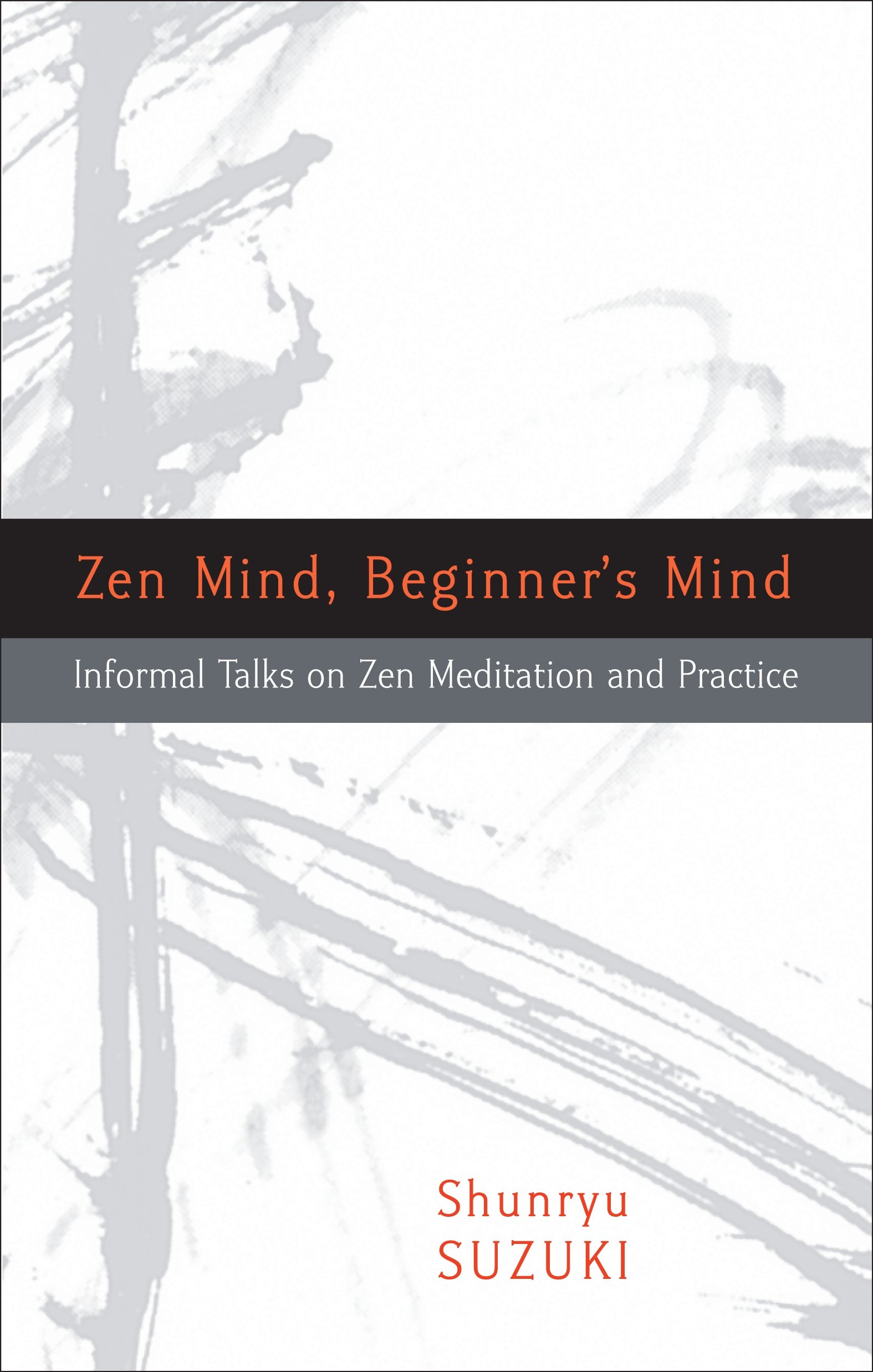 Beginner's Mind by Parker Klein